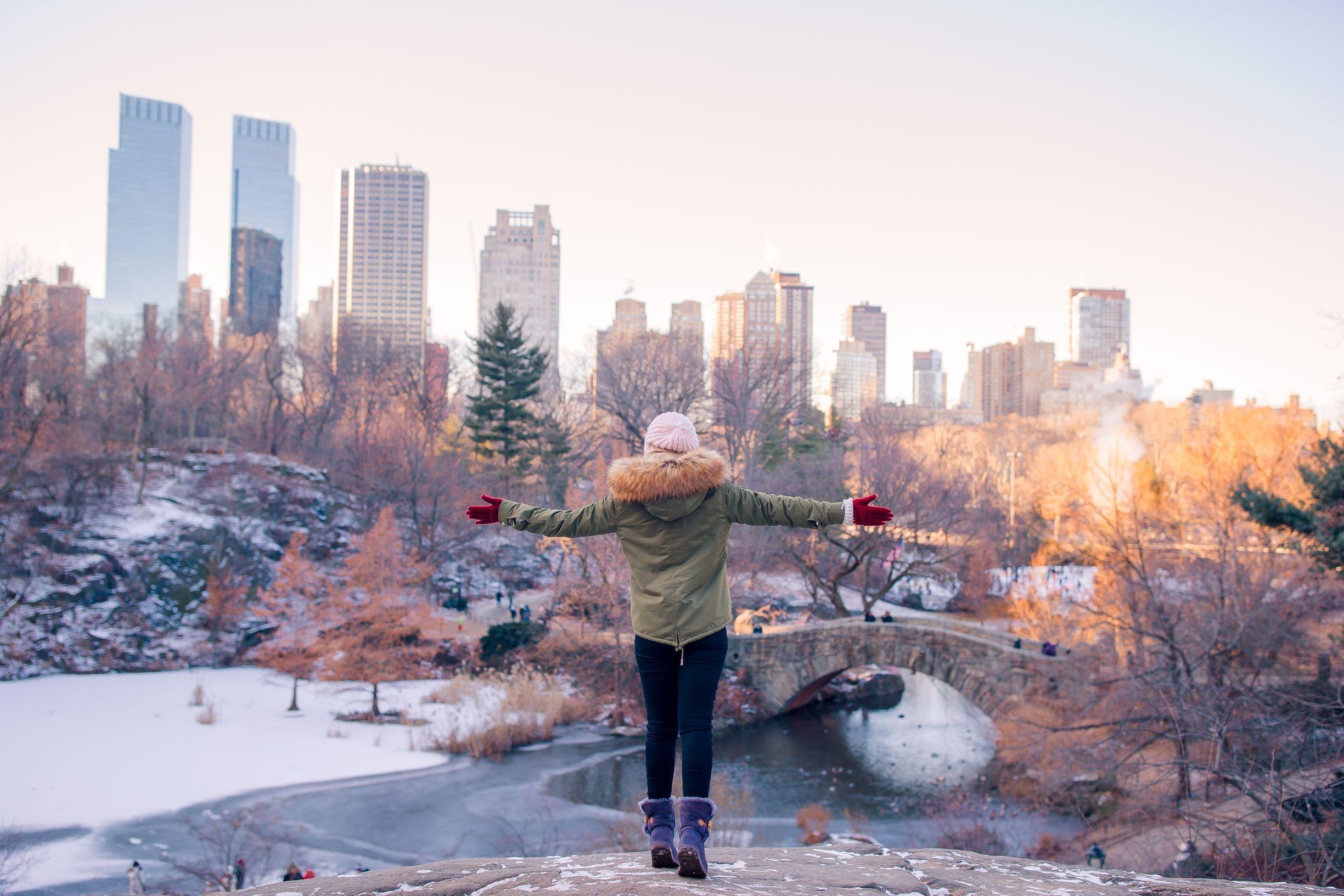 Zima w Nowym Jorku, licencja: shutterstock/By TravnikovStudio