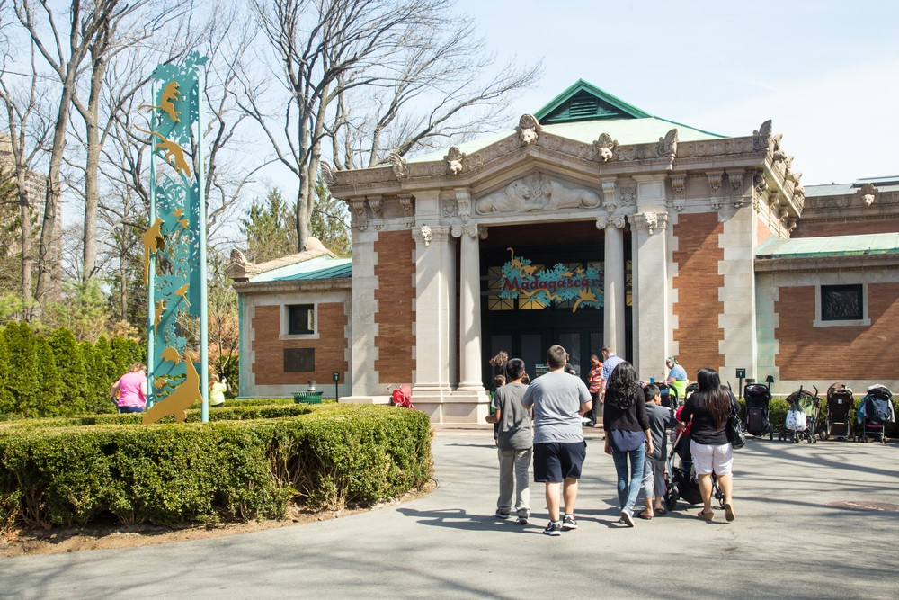 BRONX, NEW YORK - APRIL 14, 2014:  View of Bronx Zoo with visitors entering the Madagascar exhibit.