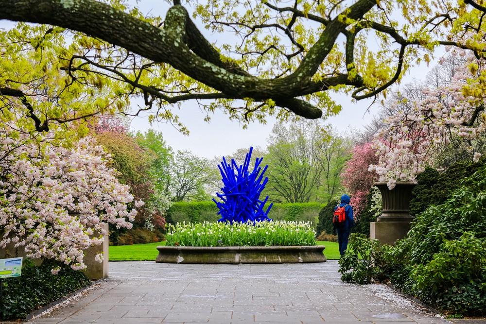 New York City, USA - April 25, 2017 : Brooklyn Botanic Garden in spring,Brooklyn,New York,USA.